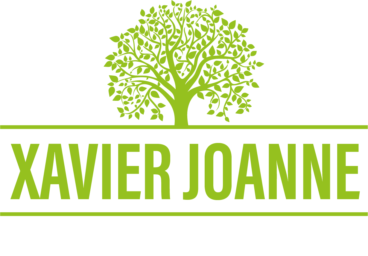 Xavier Joanne Paysages